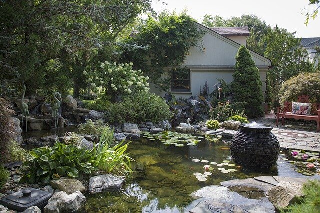 design and build a backyard pond